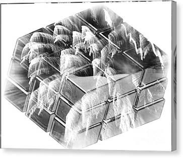 The Cube - Abstract - Ile De La Reunion - Reunion Island - Indian Ocean Canvas Print by Francoise Leandre