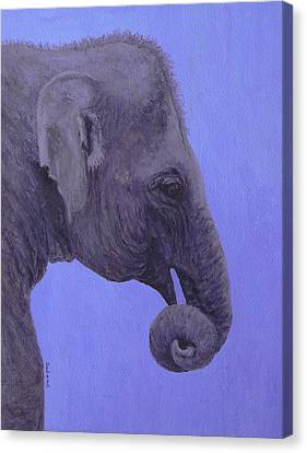 Canvas Print featuring the painting The Curled Trunk by Margaret Saheed