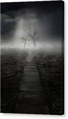 The Dark Land Canvas Print by Jaroslaw Blaminsky