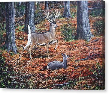 The Decoy Canvas Print