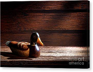 The Decoy Canvas Print by Olivier Le Queinec