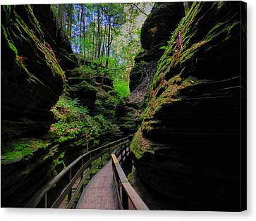 The Dells 044 Canvas Print by Lance Vaughn