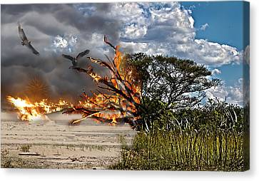 The Destruction Of Our Land Canvas Print by Ronel Broderick