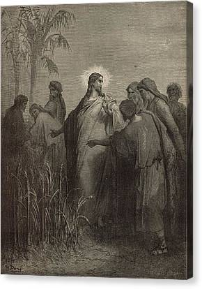 The Disciples Plucking Corn On The Sabbath Canvas Print by Antique Engravings