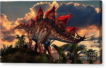 The Distinctive Shape Of Stegosaurus Canvas Print