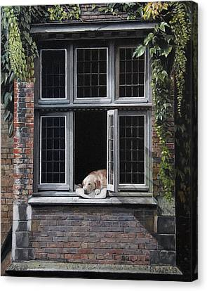 The Dog Of Bruges Canvas Print by Scot White