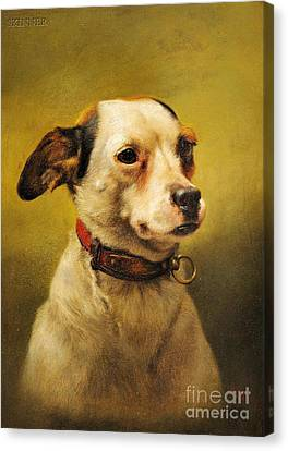 The Dog Canvas Print by Celestial Images