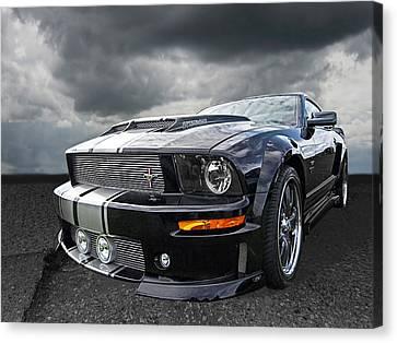 The Dominator - Cervini Mustang Canvas Print by Gill Billington