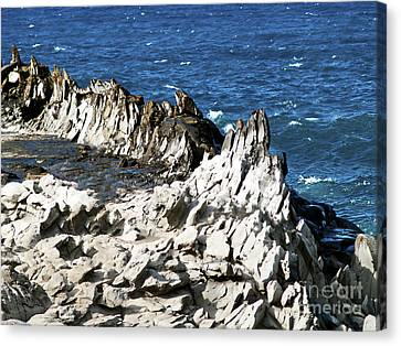 The Dragons Teeth I Canvas Print by Patricia Griffin Brett