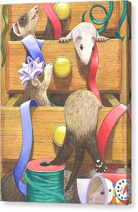 Ferret Canvas Print - The Drawers by Catherine G McElroy