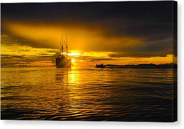 Canvas Print featuring the photograph The Dream by Terry Cosgrave