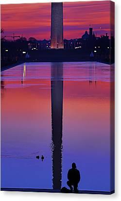 The Ducks Vs The Photographer Canvas Print by Metro DC Photography