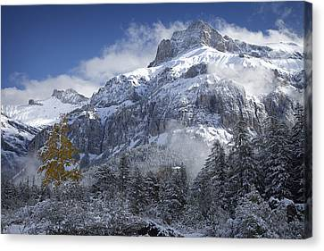 The Dwarf And The Giant Canvas Print