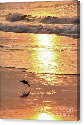 The Early Bird Canvas Print