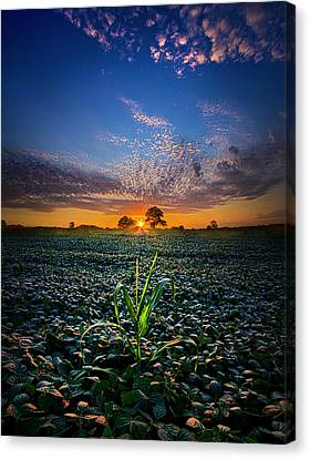 The Edge Of Dreams Canvas Print by Phil Koch