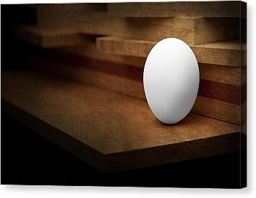The Egg Canvas Print by Tom Mc Nemar