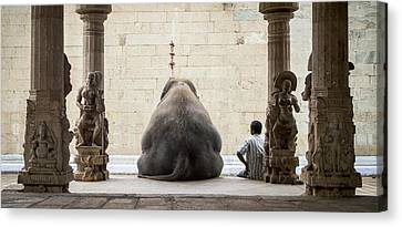 The Elephant & Its Mahot Canvas Print by Ruhan