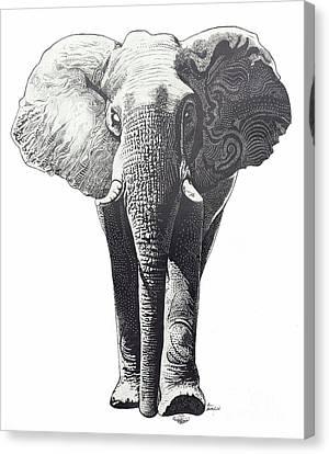 The Elephant Canvas Print by Kean Butterfield