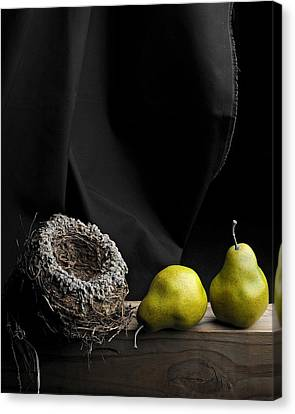 Canvas Print featuring the photograph The Empty Nest by Krasimir Tolev