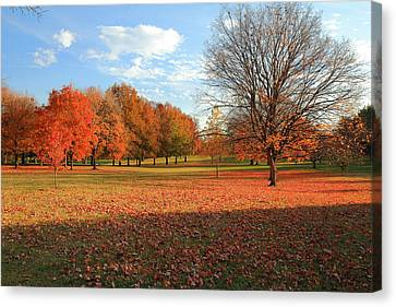 Canvas Print featuring the photograph The End Of Autumn In Francis Park by Scott Rackers