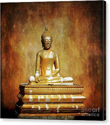 The Enlightened One Canvas Print by Scott Cameron