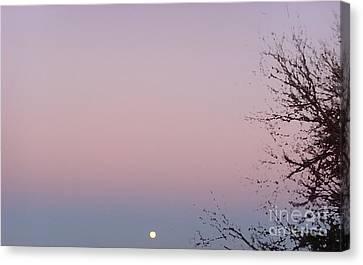 The Ephemeral Twilight Canvas Print by Alexander Van Berg