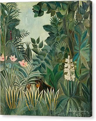 The Equatorial Jungle Canvas Print by Henri Rousseau