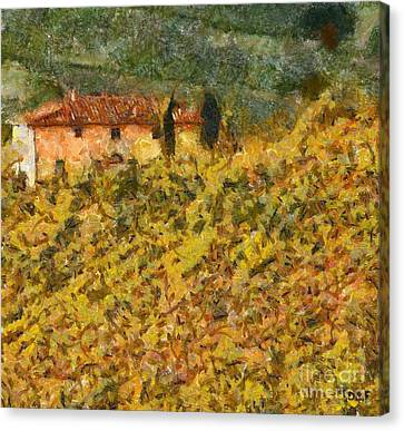 The Evening Before Grape Harvest Canvas Print by Dragica  Micki Fortuna