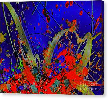 The Explosion Of Color Canvas Print by Doris Wood