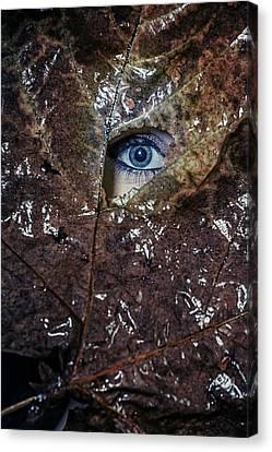 The Eye Canvas Print by Joana Kruse