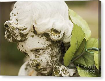 Canvas Print featuring the photograph The Face Of An Angel by Amber Kresge