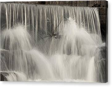 The Falls Canvas Print by Cindy Rubin