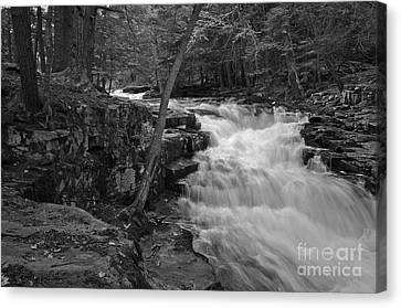 The Falls Canvas Print by David Rucker