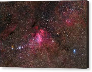 The False Comet Cluster In Scorpius Canvas Print by Lorand Fenyes