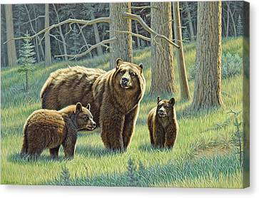 The Family - Black Bears Canvas Print by Paul Krapf