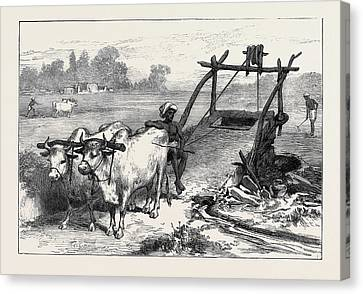 The Famine In Bengal Indian Mode Of Irrigation 1874 Canvas Print