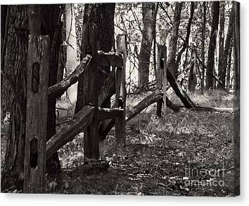 Canvas Print featuring the photograph The Fence by JRP Photography
