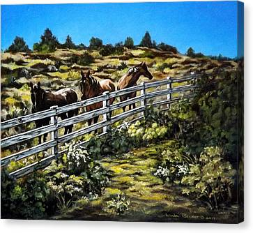 The Fence Canvas Print by Linda Becker