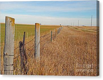 The Fence Row Canvas Print by Mary Carol Story