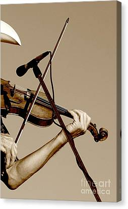 The Fiddler Canvas Print by Robert Frederick