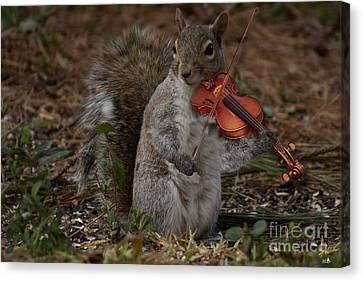 The Fiddler Canvas Print