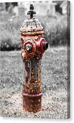 Canvas Print featuring the photograph The Fire Hydrant by Ricky L Jones