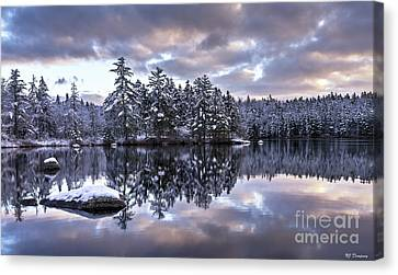 The First Snow Canvas Print by Nancy Dempsey