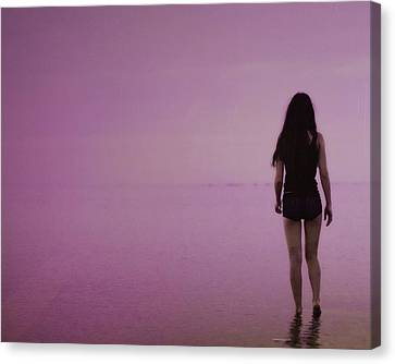 Entering A New Dimension  Canvas Print by Dennis Baswell