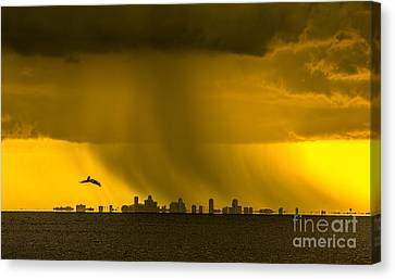 Flying White Pelicans Canvas Print - The Floating City  by Marvin Spates