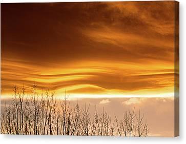 The Flow Canvas Print by Jim Garrison