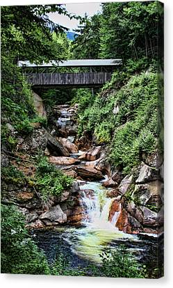 The Flume Canvas Print by Heather Applegate