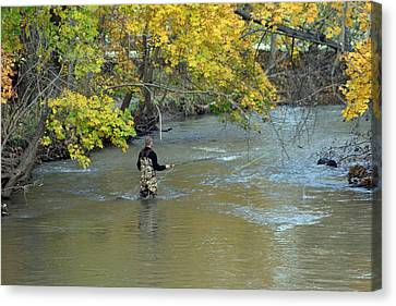 The Fly Fisherman Canvas Print by Kay Novy