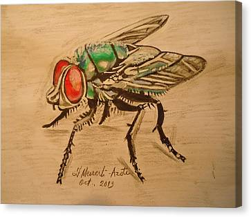 The Fly Canvas Print by Fladelita Messerli-