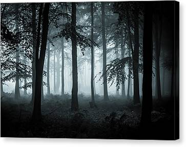 The Fog Canvas Print by Ian Hufton